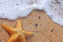 Imagens do mar