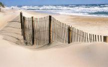 Beach Ocean Sea / by Kathy Humphrey