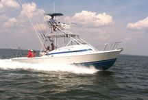 Enjoy Deep Sea Fishing Trips with SYL Charters