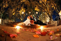 Weddings, Engagements & Special Occasions / Claremont's historical tree-lined neighborhoods & quaint charm provide a gorgeous setting for wedding and engagement celebrations, as well as birthday parties & anniversaries. We have a variety of venues & vendors to accommodate different tastes and needs.