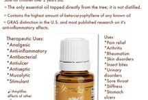 YL oils / by Shannon Smith