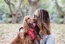 fotos mit hund