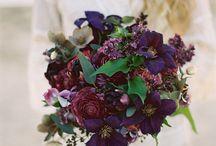 Purple :: Lavender :: Aubergine