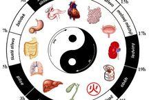 alternativní medicina