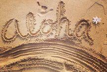 Beach Life || Florida / Como é viver no Estado do Sol :)