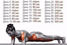 Тренировочные упражнения