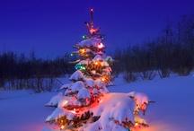 CHRISTMAS / by Sharon Cumberland
