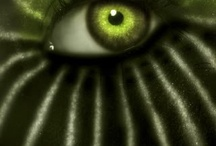 Hidden glances