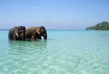 Andamans...