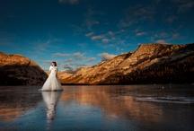 Inspiration: Bridals / by Liz Bradley