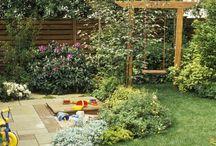 Backyard / by Beverly Elliot