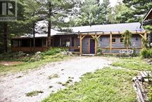 Purple Door Acres / Tucked away in Stone Mills Ontario. Our 16 treed-acre-purple door bungalow