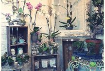 Furniture for flower shop