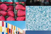 color schemes / a collection of inspiring color schemes that we share on our blog
