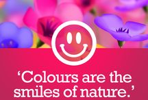 Colour Quotes / Quotes surrounding the colours