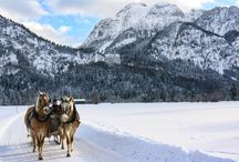 Germany & Austria / A  true fairytale country!
