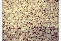 すぺこ / From Seed to Cup  <スペシャルティコーヒーとは> 風味が素晴らしい美味しさであり、消費者が美味しいと評価して満足するコーヒーであること。  <風味の素晴らしいコーヒーの美味しさとは> 際立つ印象的な風味特性があり、爽やかな明るい酸味特性があり、持続するコーヒー感が甘さの感覚で消えていくこと。  <カップの中の風味が素晴らしい美味しさであるためには> コーヒーの豆(種子)からカップまでの総ての段階に於いて一貫した体制・工程で品質管理が徹底している事が必須。