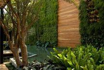 Interior, Garden & more