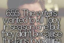 pll facts