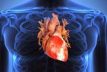 Pentingnya Electrocardiographs Untuk Dokter Dan Surgeons oleh neon lewis