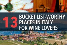 Wine - Travel / Tips for wine travel. Great wine destinations. Ideas to get you excited for your next trip!