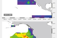 Charts and Graphics of Sea and land pollution!
