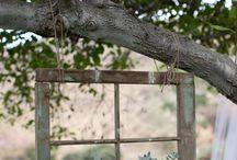 Outdoors / by Tina Johnson