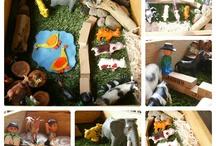 Preschool Summer Animal Safari