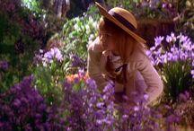 the garden / giardini,fiori,piante,arredo giardino