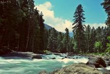 #Kashmir - This is Paradise