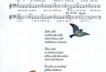 písníčky