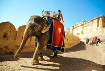 Jaipur City Tour / Jaipur City Tour from Delhi #delhijaipurtour #jaipurcitytour #jaipurtourfromdelhi http://toursfromdelhi.com/jaipur-city-tour/