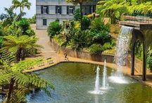 Jardins tropicaisjardim