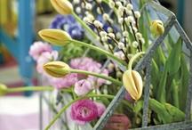 Easter - Centerpieces