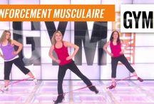 exercices gym