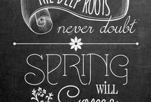 Chalkboard Quotes / by Holly Adams