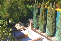 Jardin y Terrazas