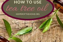 Green Life Tips and Recipes