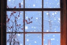 Christmas / by Sheila Dunn