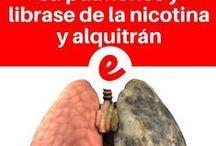 pulmones1