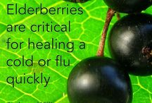 Healing cold and flu quickly