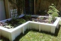 Future Garden :) / by Erin Cardoza