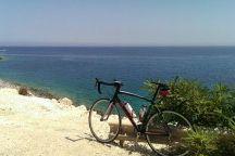Cycling / Roadracing & Cycling