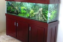 5 feet Aquarium and tank