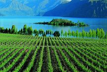 Wanaka Wonders / Just over the hill from Queenstown is the equally stunning Lake Wanaka.