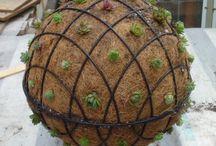 Záhrada nápady / giardinaggio idea