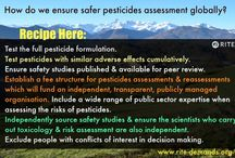 RITE A safer system of pesticide assessment. / What if one day you start to research the pesticides studies held by the US EPA, WHO & Europe? You realise they are not safe? That these big agencies that convince our governments that pesticides & GMO's are safe - simply don't look at the important things? They don't research the full formulations of these mixtures that's poured on our cereals, fruit & vegetables, they never look at the effects on the endocrine, digestive systems, rarely consider neurological stuff & never look at kids needs.