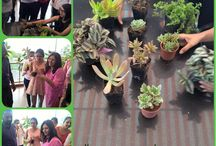 Events at Brandcare Office / Special days celebrated by Brandcareians