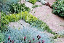 tuin / Leuke ideeën voor een hippe tuin