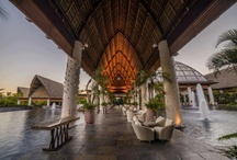 Santuario - Nuevo Vallarta / At the center Nuevo Vallarta lies an exquisite palapa temple with over 75,000 square feet where members can relax and enjoy nightly entertainment from worldwide performers... This is SANTUARIO / by Vida Vacations